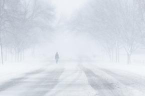 blizzard-1972645_640.jpg