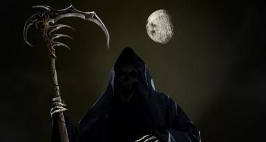 skull-1731927_640.jpg
