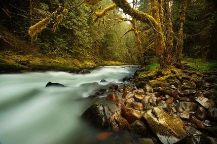 creek-731483_640.jpg