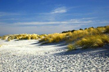 dunes-4033821_640.jpg