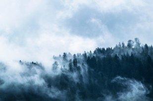 fog-1535201_640.jpg