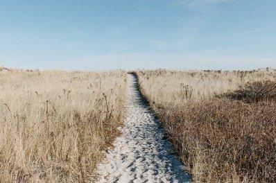prairie-1246633_640.jpg