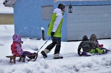 snowy-4689675_640.jpg